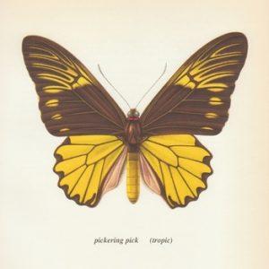 pickeringtropic
